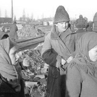 Ulvebarna - Hitlersukjente ofre