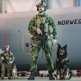 Hundene som redder liv