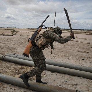 Slik ødelegges Amazonasav gullgravere