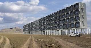 - Suger til seg likemye CO2 som 40millioner trær