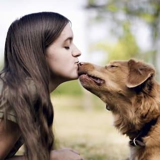 Lær deg hundespråket: Slik snakker du med hunden din