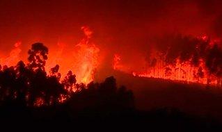 Mann pågrepet for enorme skogbranner