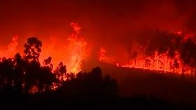 1000 brannmenn kjemper mot skogbranner