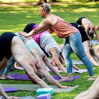 Populariteten øker: Nye studier om yogaens effekt