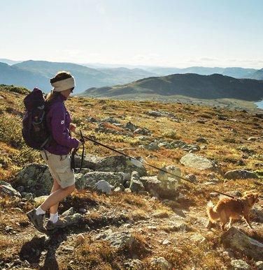 Fem turer som tar deg til topps