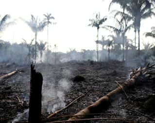 Amazonas-brannene: - Må våkne