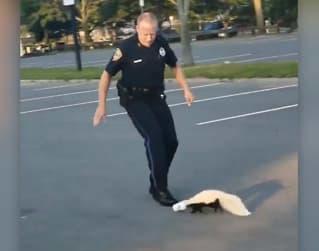Heldig stinkdyr - uheldig politimann