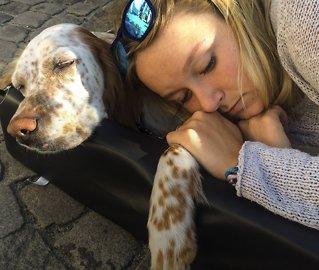 Tre familier om hundedøden:Rakk å logre før hun sovnet inn