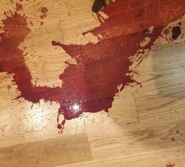 Hundedøden: Møtt av et blodbad